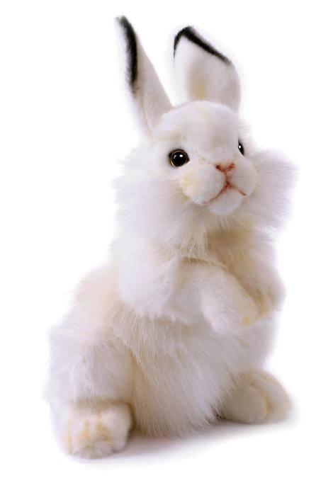 Купить Hansa Creation Белый кролик, 32 см - 3313 - мягкие игрушки, Филиппины